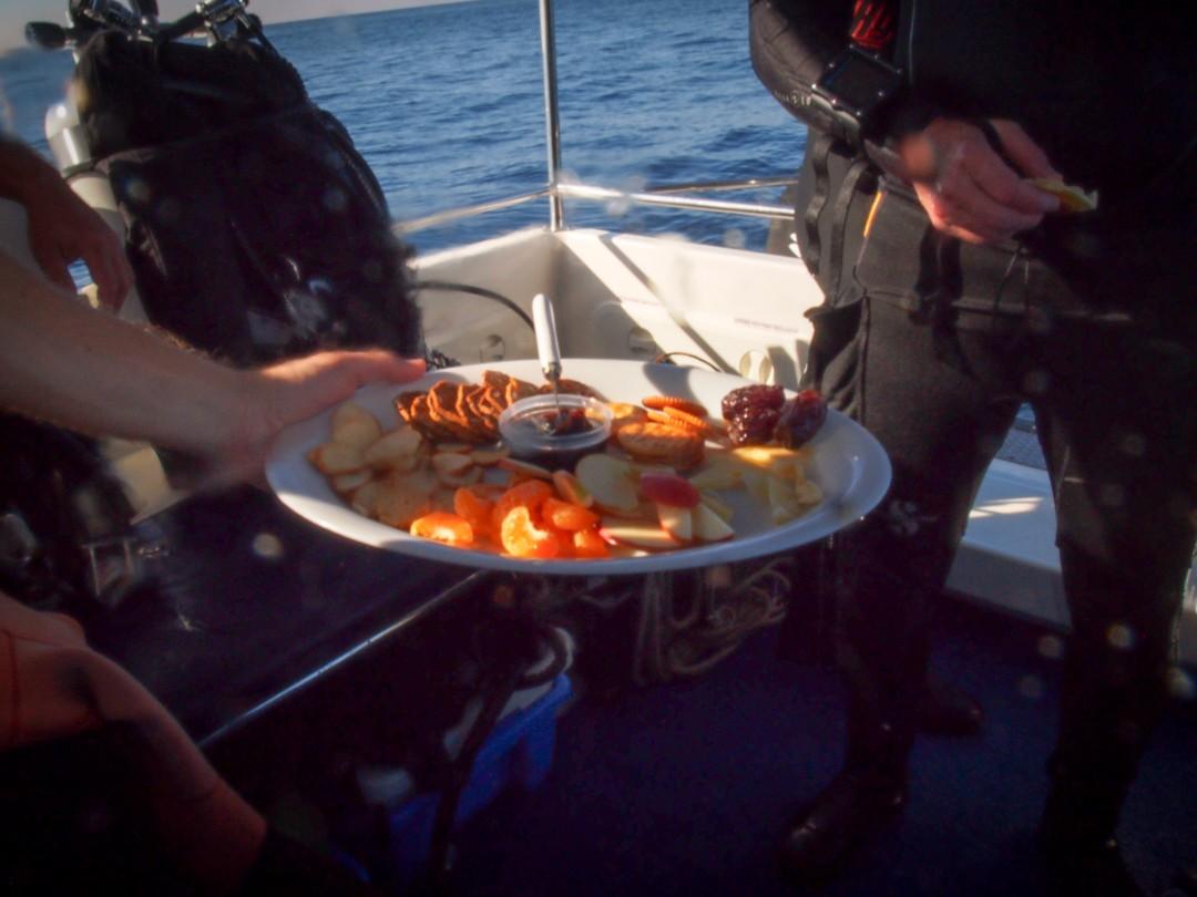 Sydney diving the apartement snacks onboard sydney charter diving