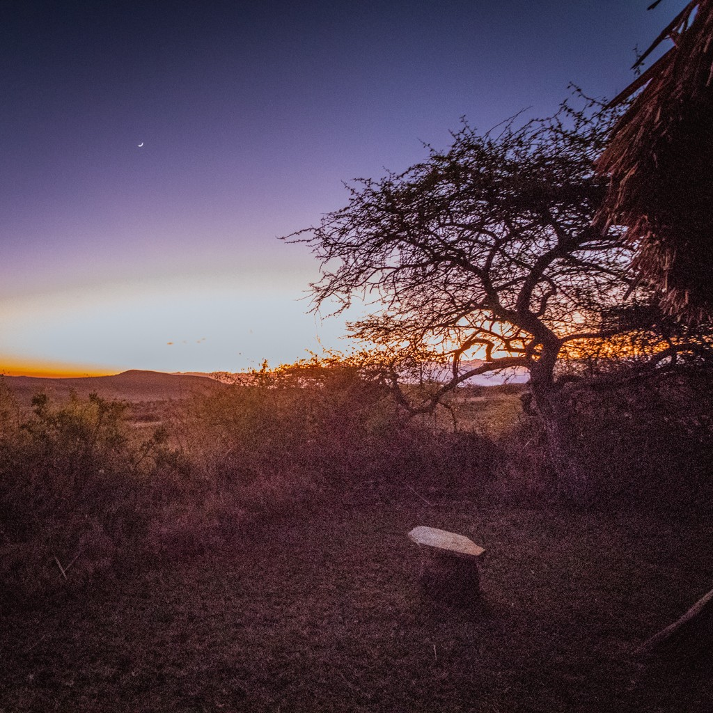Lewa house review sunset