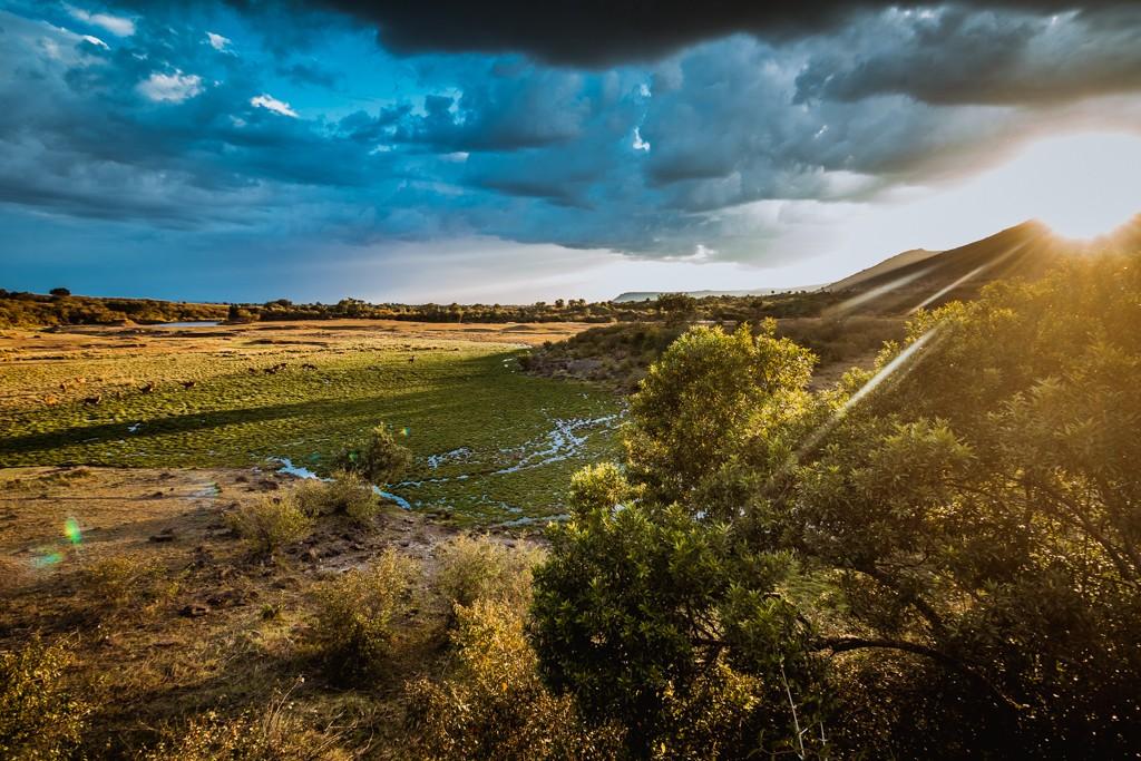 Tangulia Masai Mara salt lick view