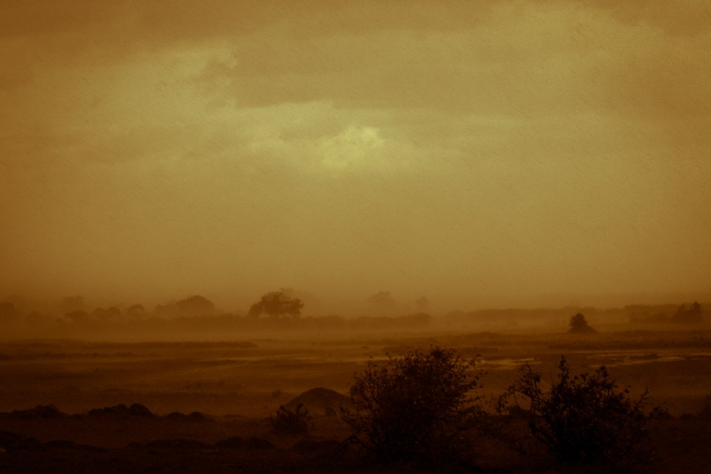 Tangulia Masai Mara rainy day